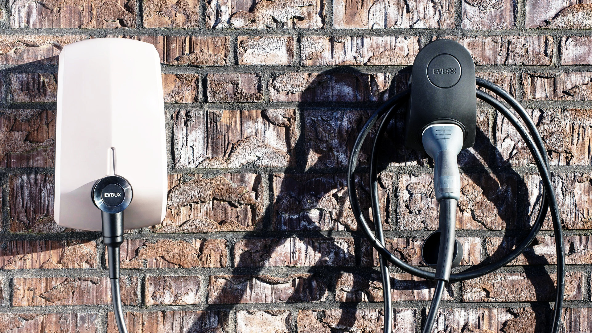 A charging station and cable sitting side by side as the afternoon sun cascades over both.