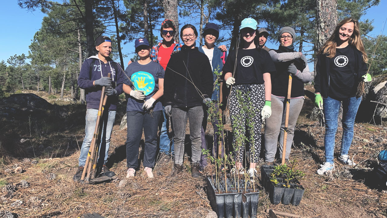 tree-planting-evbox