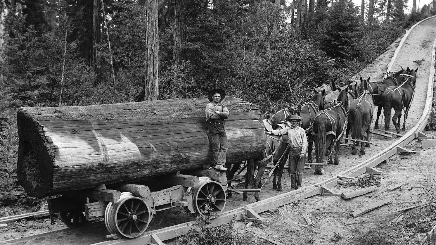 horse-railroad