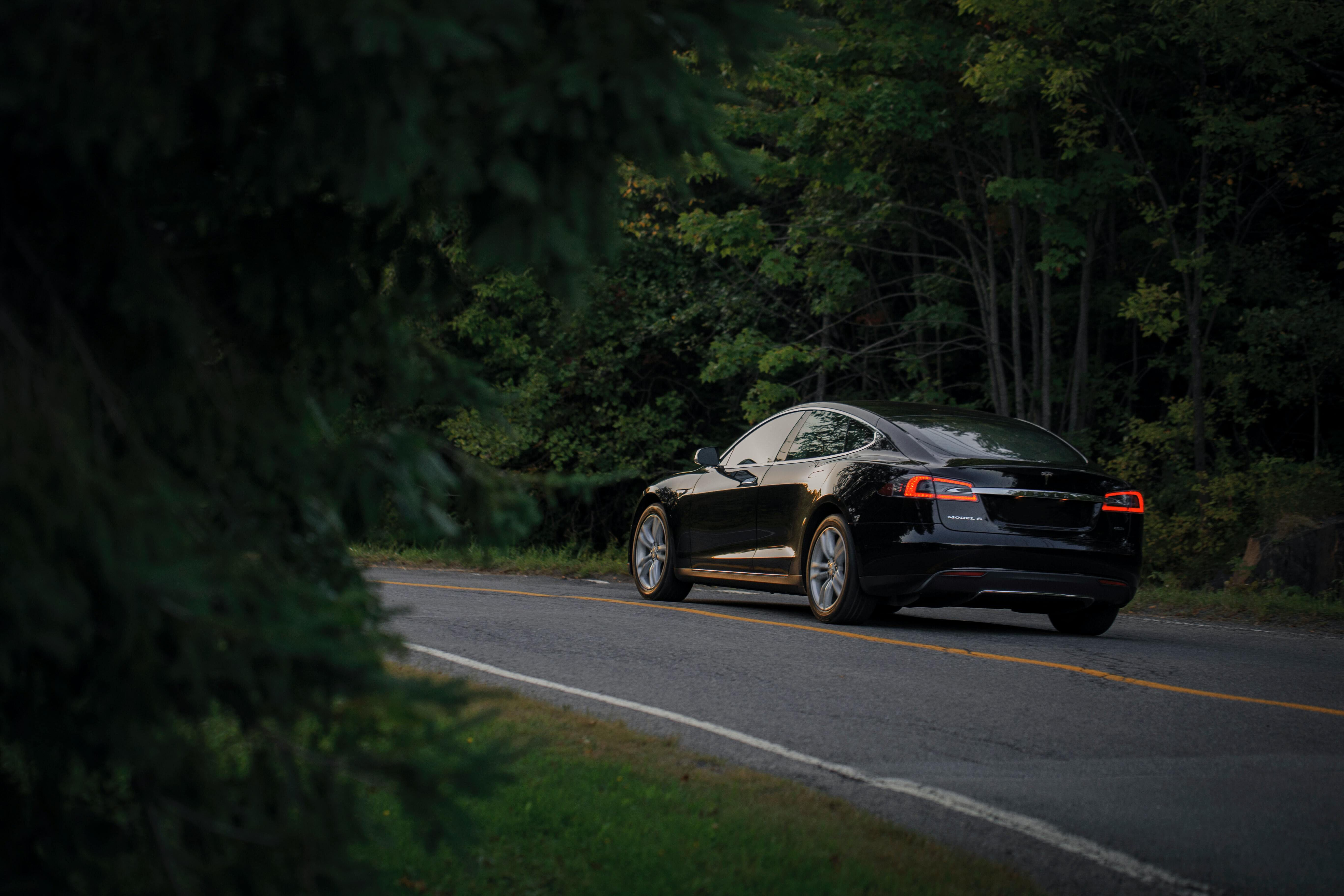 An EV driving on a road in the middle of a forest